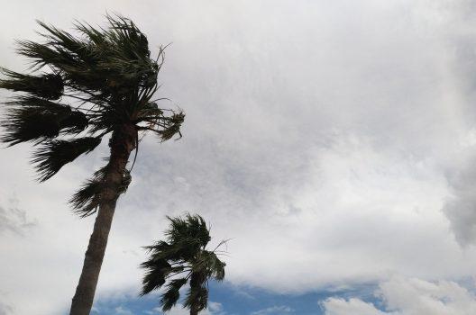 アンテナは台風に弱い?台風時の正しい対処と対策方法をご紹介